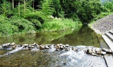 滝と渓流の高山キャンプ場 = 森と川に囲まれたバンガローと ...